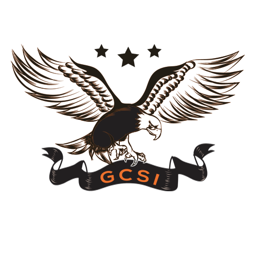 GCSI - Expert Excel VBA ACCESS